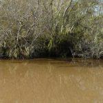 Pestycydy w wodzie – skąd się biorą? Czy są groźne?