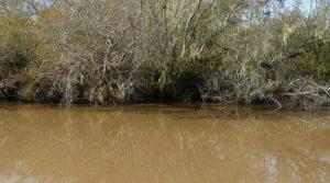 zanieczyszczona woda z pestycydami